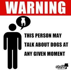 hahaha true.  Shih Tzu