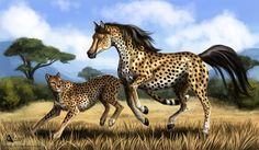 Cheetah Horse by Azany on DeviantArt. Reminds me  of  the cool trading cards you used to get on an old horse DS game.