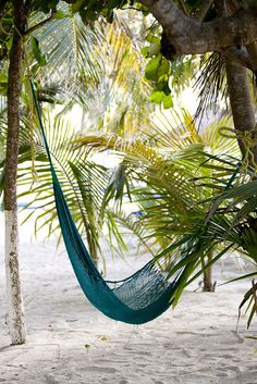 A hammock under a shady tree - inviting respite to indulge in a leisure read in the breeze, a nap and drinking in the essence of summer.