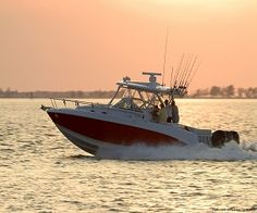 5 of the Most Enjoyable Things to Do in Ft. Myers, FL!