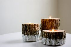Silver Painted Log Votives