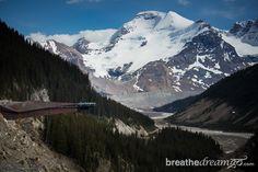 Glacier Skywalk, Icefields Parkway, Alberta http://breathedreamgo.com/2014/08/the-rockies-icefields-parkway-alberta/