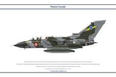 Tornado IDS 36 Stormo