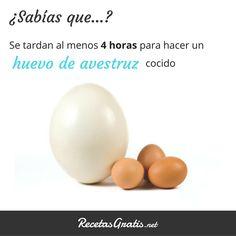 Huevos #RecetasGratis #Expresiones #Citas #Quotes #FrasessobreComida #FrasedelDía #SabíasQué #Huevos