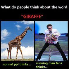 KwangSoo = Cute Giraffe (^.-)