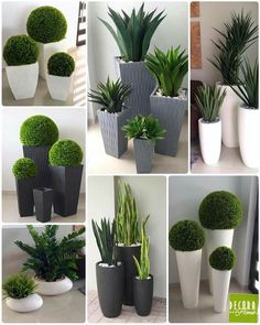 120 minimalist garden design ideas for small garden -page 16 Indoor Garden, Garden Pots, Indoor Plants, Outdoor Gardens, Balcony Garden, Plants For Balcony, Gravel Garden, Sky Garden, Fake Plants