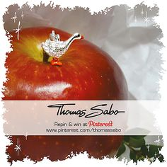 One lucky winner will be drawn on December 20, 2012! Important: Your facebook or twitter account must be linked to your Pinterest profile! Terms and conditions:  http://images.thomassabo.com/www/2/2012/11/TC-Pinterest-Xmas-Sweepstake.pdf