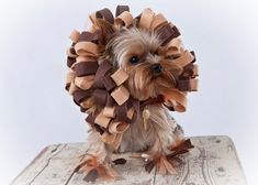 Lion Dog Costume  Pet Halloween Costume by KOCouture on Etsy, $65.00    Lolli for Halloween!