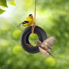 Remember the idyllic summer fun of a tire swing hanging from a big oak in the backyard? Let your neighborhood birds experience the same joy while eating the seed you've left for them. SWING TIME ceramic tire is supplied complete with a hanging rope.