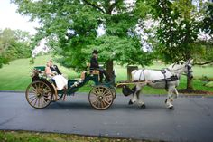 Our dark green and tan carriage looks great for a wedding. www.willowwindcarriagelimo.com