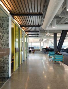Zaddle Redwood City Office by Studio O+A