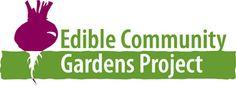 Edible Gardening Options for South Florida Summers Allotments, Companion Planting, Edible Garden, South Florida, Garden Projects, Gardens, Community, Party, Summer