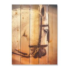 Noble Steed 28x36-inch Indoor/ Outdoor Full Color Wall Art