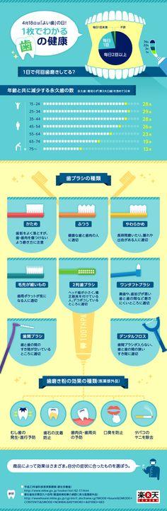 4月18日は「よい歯」の日!1枚でわかる歯の健康 2015年4月10日 20:45 infographic.jp - インフォグラフィックス by IOIX  /  infographic.jp