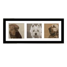 buy dogs triptych framed print online framed pictures dunelm mill