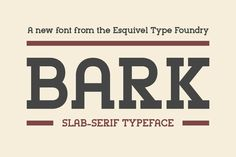Bark Slab by Esquivel Type Foundry on Creative Market