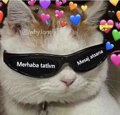 Today's Morning Mega Memes Cute Love Memes, Pretty Meme, Stupid Memes, Funny Memes, Emoji, Foto Gif, Mood Pics, Top Memes, Me Too Meme