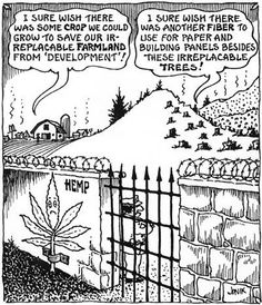 So many people are still misinformed about hemp, but it really can save our planet!