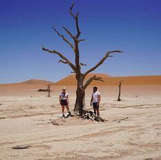 . . . . . #sossusvlei #deadvlei #travel #travelbuddy #instalike #instadaily #vakansie @namibiatourismboard #holidays #roadtrip #namibia #namibia #lekker #sesriem Camel, Holidays, Animals, Instagram, Holidays Events, Animales, Animaux, Holiday, Camels