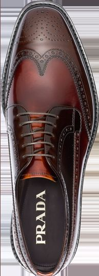 oxfords brogues
