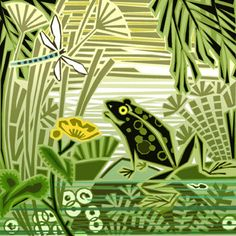 'Frog' - illustration by Jenny Tylden Wright Cartoon Drawings, Art Drawings, 50th Anniversary Cards, Frog Illustration, Frog Drawing, Frog Pictures, Frog Design, Fable, Frog Art