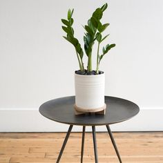 Striped Planter & Wood Tripod Stand, $110