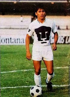 Football Mexicano, Champion, Sports, Animals