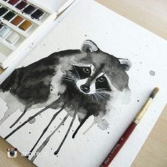 Image result for racoon sketch paintings
