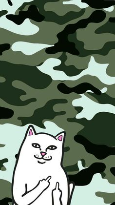 Ripndip iphone wallpaper #ripndip #middle #finger #cat #wallpaper #iphone #green #camouflage
