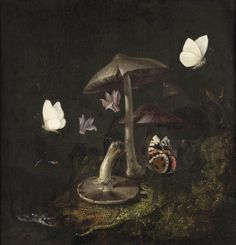 the-cinder-fields: Otto Marseus van Schrieck, A 'sotto bosco' with mushrooms, butterflies, a dragonfly, a snake and a lizard , 17th century