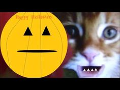 Halloween Songs for Children and Kids - Scary, scary