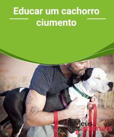 Educar um cachorro ciumento  É interessante como os cães se parecem com os humanos, eles precisam do nosso carinho, atenção, que lhes dediquemos tempo e também possuem sentimentos. As pessoas que têm cachorros em casa já sabem muito bem disso.