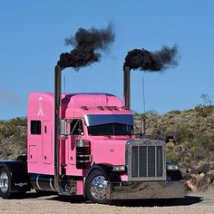 If I followed in my grandfather's footsteps of being a truck driver..... my truck would be pink.. or purple (: