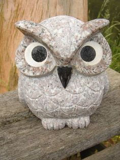 Owls symbolize wisdom, the ability to see things that are hidden, stealth, swiftness, darkness, freedom, dreams, shape-shifting, secrets, omens, clairvoyance, astral projection, magick, deception, observation, total truth, night, death and misfortune.