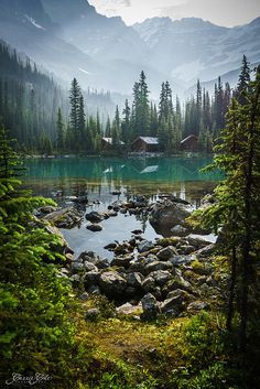 Beautiful Lake O'Hara in Yoho National Park. Photo by Carrie Cole Photography. Beautiful World, Beautiful Places, Beautiful Pictures, Yoho National Park, National Parks, Grand Teton National, Landscape Photography, Nature Photography, Photos Voyages