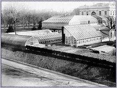 1890 proliferation of greenhouses on the White House South Lawn.