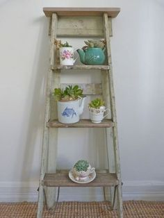 They can live in teacups ON LADDERS.