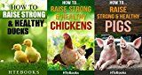 Free Kindle Book -   How To Raise Strong & Healthy Farm Animals - 3 books in 1: Covers - Chickens, Ducks and Pigs Check more at http://www.free-kindle-books-4u.com/business-moneyfree-how-to-raise-strong-healthy-farm-animals-3-books-in-1-covers-chickens-ducks-and-pigs/
