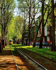 Numero 23 Milano/ Italy #milano #italia #italy #salonedelmobile #milanodesignweek #tramway #train #street #trees #green #ascoli #piazza #travellife #globetrotter #globe #travel #love #travelbug #wanderlust #travelermoon by travelermoon9