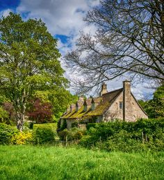 A row of lovely cottages near Bradford-on-Avon, Wiltshire, England.