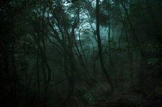Série « Silence » © olivia lavergne - 2012-2014