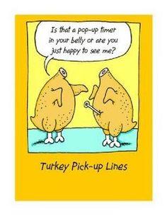 Flirty turkeys