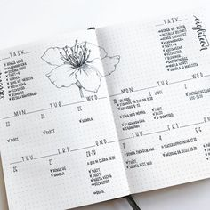 40 minimal and minimalist bullet journal spreads to keep your journal uncluttered and your mind clear for planning and productivity! Bullet Journal Spreads, Bullet Journal Notebook, Bullet Journal Junkies, Bullet Journal Themes, Bullet Journal Layout, Bullet Journal Inspiration, Journal Ideas, Bullet Journals, Minimalist Bullet Journal