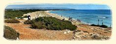 #Vendicari #beach natural #reserve #Sicily