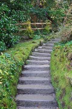 Powerscourt Gardens, Co Wicklow, Ireland