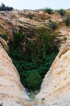 Entrada a la Cueva de Zaén (Moratalla)