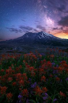 Mount St. Helens. by Miles Morgan