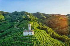 The Prosecco Wine Road — Prosecco.it — Conegliano Valdobbiadene - Just another WordPress site Winery Tasting Room, One Day Trip, Helicopter Tour, Italy Vacation, Italy Travel, Sparkling Wine, World Heritage Sites, Places To See, Wine Pairings
