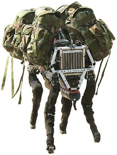 Big Dog by Boston Dynamics.  BigDog is the size of a large dog or small mule; about 3 feet long, 2.5 feet tall and weighs 240 lbs. BigDog runs at 4 mph, climbs slopes up to 35 degrees, walks across rubble, climbs muddy hiking trails, walks in snow and water, and carries 340 lb load.
