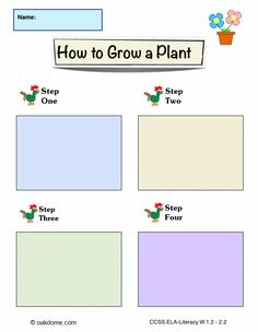 iPad Graphic Organizer - How to Grow a Plant